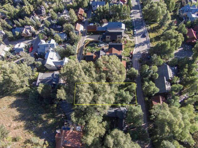 C N Aspen Street C, Telluride, CO 81435 (MLS #36238) :: Nevasca Realty
