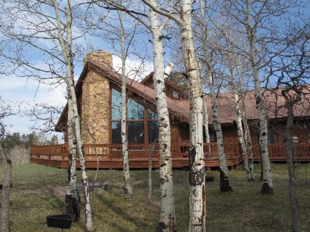 1623 Aspen Drive, Ridgway, CO 81432 (MLS #36245) :: Nevasca Realty