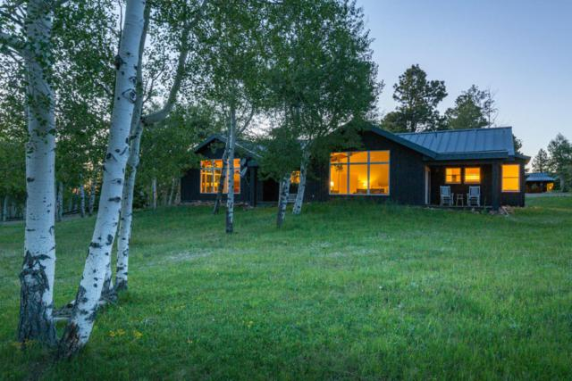 3289 Laughing Dog Road, Placerville, CO 81430 (MLS #36305) :: Nevasca Realty