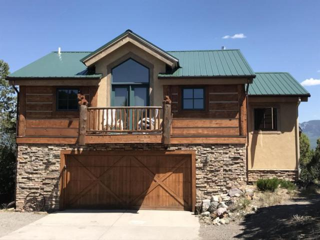 360 Grand Mesa Court, Ridgway, CO 81432 (MLS #36325) :: Telluride Properties