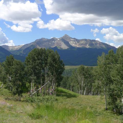 860 Wagner Way #9, Telluride, CO 81435 (MLS #36329) :: Telluride Properties