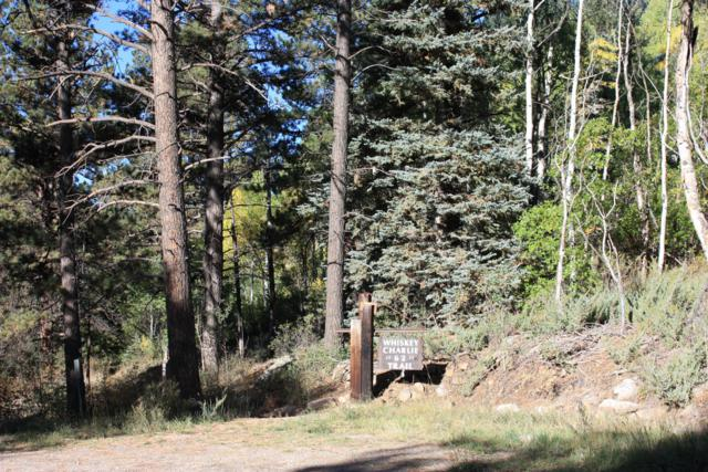 TBD Sky Mountain Ranch Road #1, Placerville, CO 81430 (MLS #36438) :: Telluride Properties