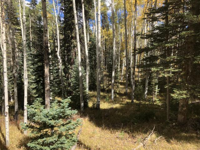 TBD Aspen Park Court #44, Telluride, CO 81435 (MLS #36458) :: Nevasca Realty
