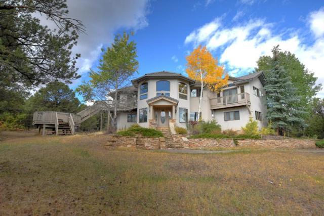 2511 Ponderosa Drive, Ridgway, CO 81432 (MLS #36460) :: Telluride Properties
