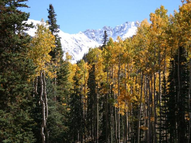 TBD Cortina Drive 3-7, 10, Mountain Village, CO 81435 (MLS #36486) :: Telluride Properties
