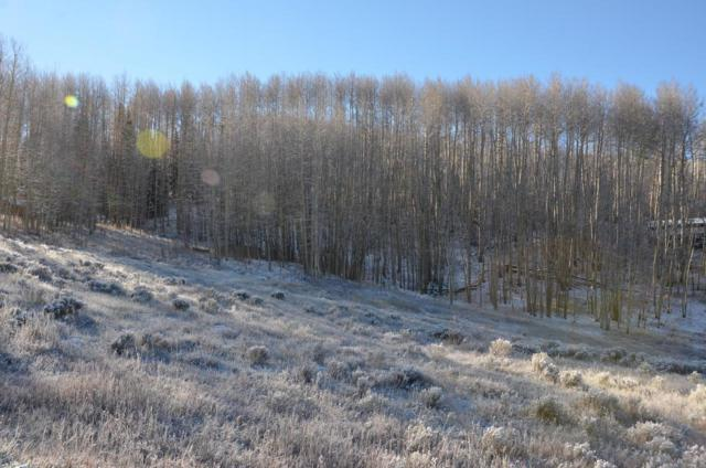 Lot 50 Sunset Circle, Telluride, CO 81435 (MLS #36502) :: Nevasca Realty