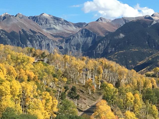 TBD Albert J Road #127, Telluride, CO 81435 (MLS #36534) :: Telluride Properties