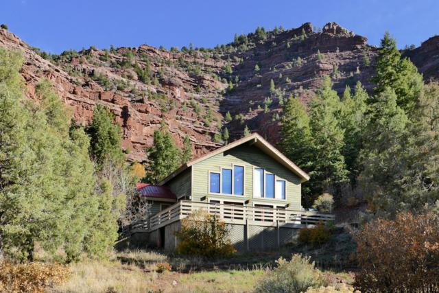 124 Village Lane, Placerville, CO 81430 (MLS #36542) :: Telluride Properties