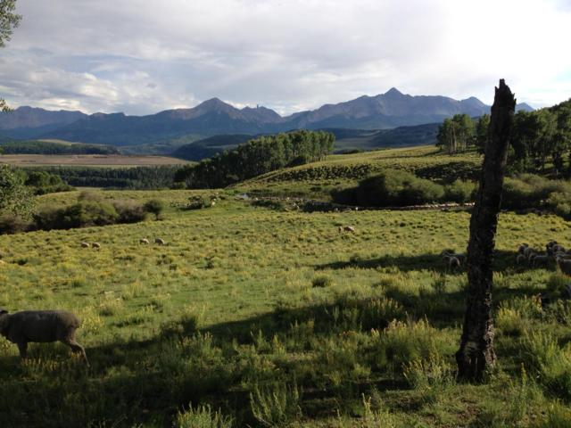 TBD Three Sisters Way #6, Telluride, CO 81435 (MLS #36546) :: Nevasca Realty