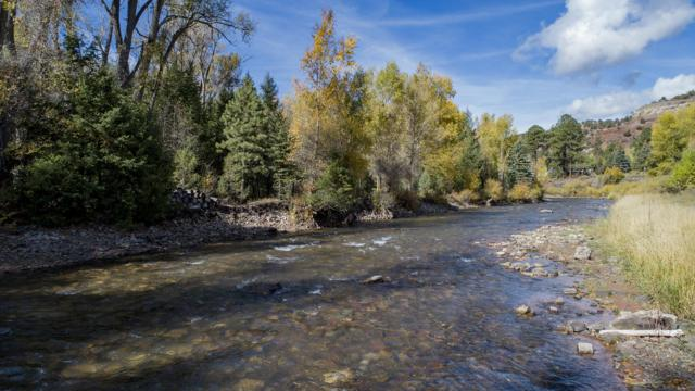 143A Stock Road E, Placerville, CO 81430 (MLS #36642) :: Telluride Properties