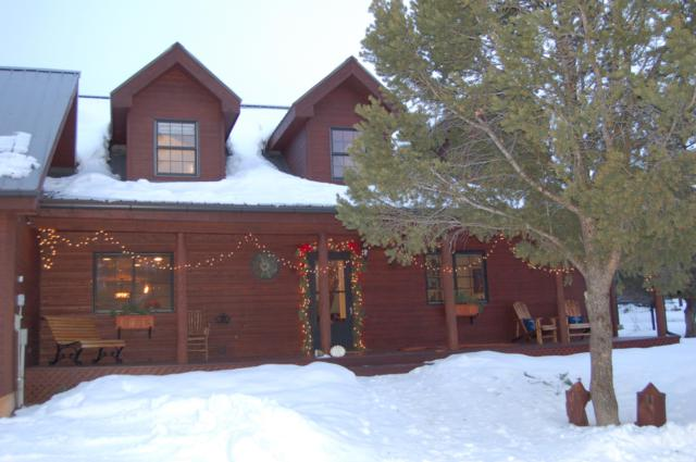 1010 Canyon Drive, Ridgway, CO 81432 (MLS #36711) :: Telluride Real Estate Corp.