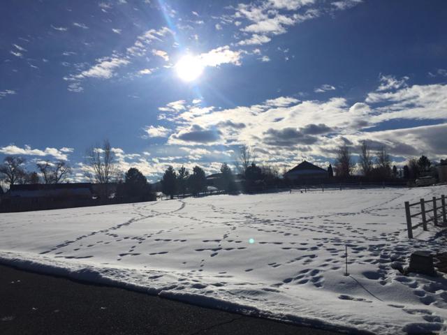 Lot 21 Valley Way, Montrose, CO 81401 (MLS #36737) :: Telluride Properties