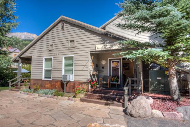 333 S Davis Street #222, Telluride, CO 81435 (MLS #36785) :: Nevasca Realty
