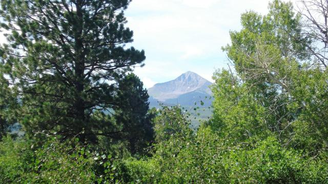 Lot 8 County Road 44Zs (Lone Cone) #8, Norwood, CO 81423 (MLS #36790) :: Telluride Properties