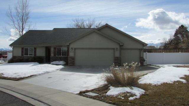 3125 Crows Nest Court, Montrose, CO 81401 (MLS #36808) :: Nevasca Realty