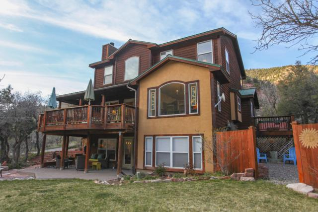 22120 Co-145, Placerville, CO 81430 (MLS #36809) :: Telluride Properties