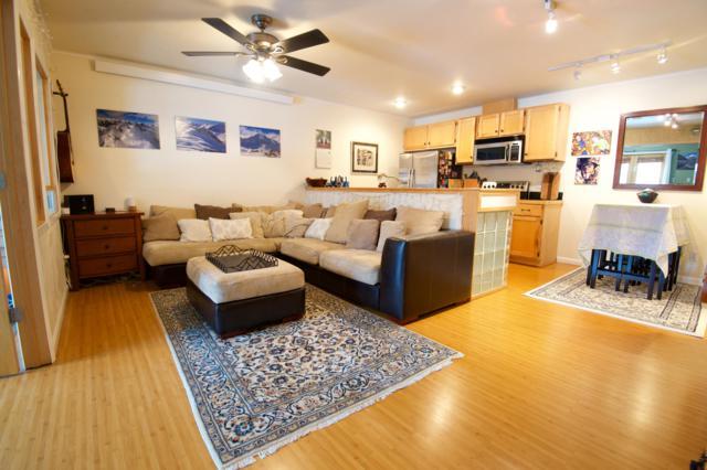 250 S Fir Street #3, Telluride, CO 81435 (MLS #36811) :: Nevasca Realty