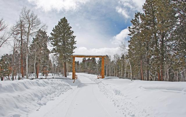 TBD Brown Ranch Road, Placerville, CO 81430 (MLS #36832) :: Telluride Properties