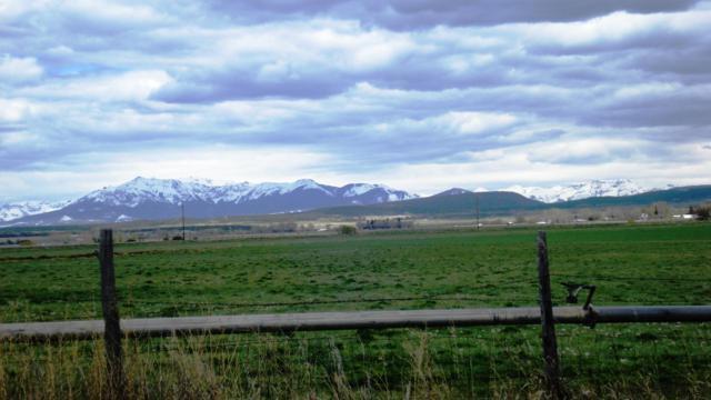 150 County Road Aa42, Norwood, CO 81423 (MLS #36847) :: Telluride Properties
