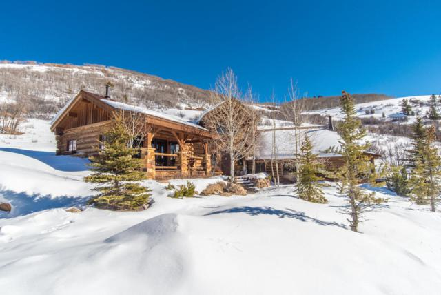 105 Hidden Bear Ranch Road, Sawpit, CO 81435 (MLS #36881) :: Telluride Properties
