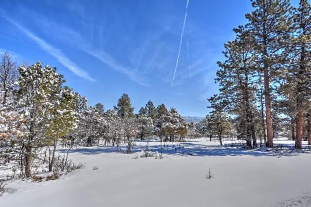 120 Puma Lane, Ridgway, CO 81432 (MLS #36882) :: Telluride Properties