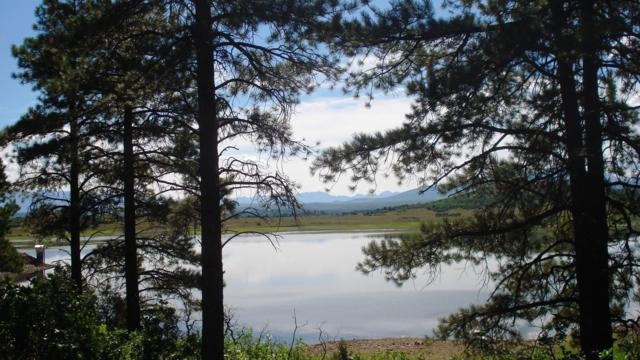 14 Lone Cone Road S44 Road #14, Norwood, CO 81423 (MLS #36930) :: Telluride Properties