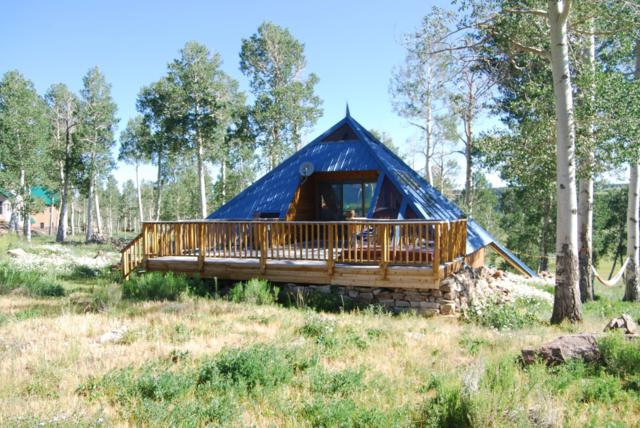 1406 E Anderson Road, Placerville, CO 81430 (MLS #36932) :: Nevasca Realty