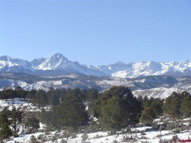 TBD County Road 5 Drive, Ridgway, CO 81432 (MLS #36936) :: Compass