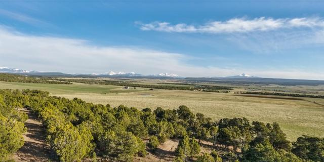 TBD N County Road 44Z North, Norwood, CO 81423 (MLS #36941) :: Telluride Real Estate Corp.