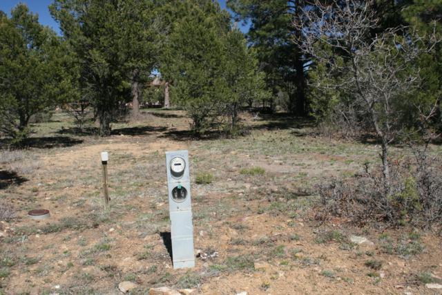 901 Ponderosa Drive #45, Ridgway, CO 81432 (MLS #36944) :: Telluride Properties