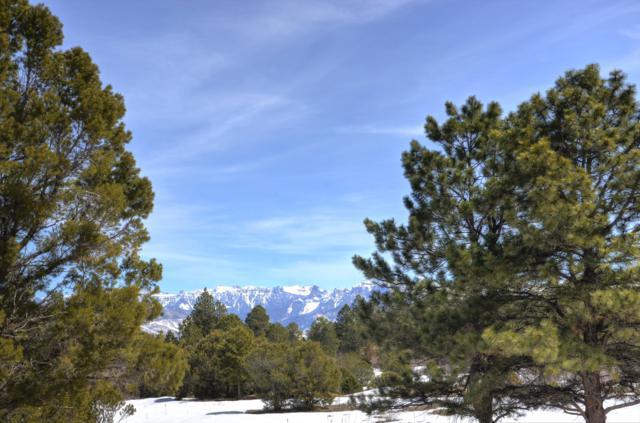 23 Cougar Trail, Ridgway, CO 81432 (MLS #36950) :: Telluride Properties