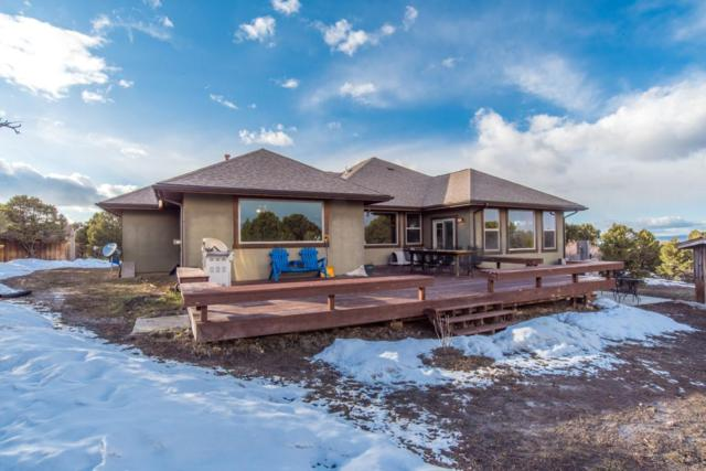 1724 Ponderosa Drive, Ridgway, CO 81432 (MLS #36953) :: Telluride Properties