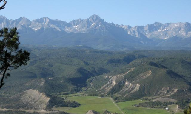 TBD Pine Drive, Ridgway, CO 81432 (MLS #36981) :: Nevasca Realty