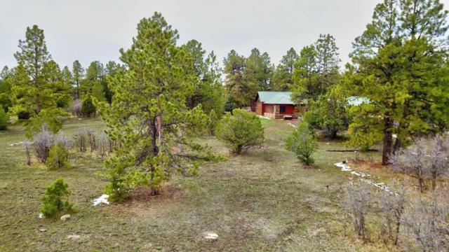 TBD Bear Cub Drive #341, Ridgway, CO 81432 (MLS #37005) :: Telluride Properties