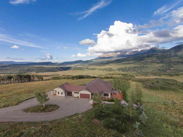 395 Flying Husky Trail, Placerville, CO 81430 (MLS #37031) :: Telluride Properties