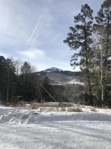 tbd Elk Wallow Road #29, Placerville, CO 81430 (MLS #37043) :: Nevasca Realty