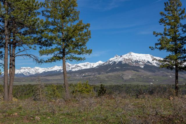 Parcel 8 Sage Grouse South #8, Placerville, CO 81430 (MLS #37072) :: Telluride Properties