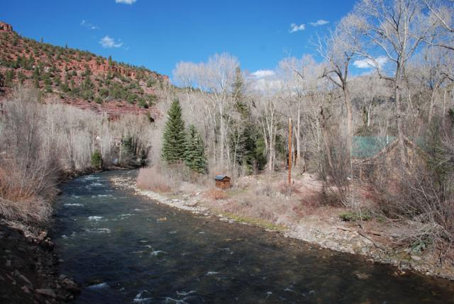 5 River Trail Rd. #1, Placerville, CO 81430 (MLS #37081) :: Telluride Properties