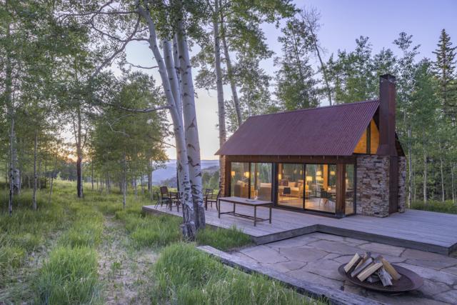 305 Katrina Springs Trail, Placerville, CO 81430 (MLS #37086) :: Telluride Properties