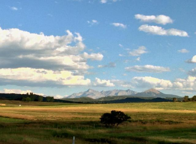 110 Co Rd 45Y Lots 1, Norwood, CO 81423 (MLS #37090) :: Nevasca Realty