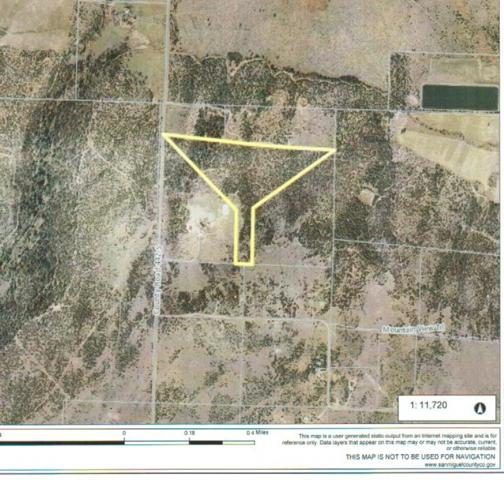 TBD County Road 44Z S Lot W 1B, Norwood, CO 81423 (MLS #37091) :: Nevasca Realty
