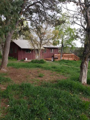 1323 County Road W35, Norwood, CO 81423 (MLS #37097) :: Telluride Properties