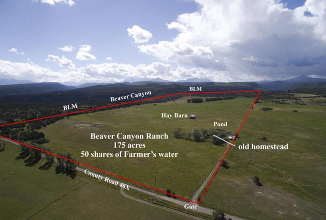 1494 County Road X45, Norwood, CO 81423 (MLS #37115) :: Nevasca Realty