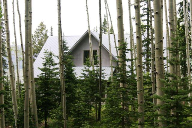 368 Skunk Creek Road, Telluride, CO 81435 (MLS #37129) :: Telluride Real Estate Corp.