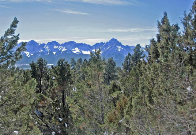 180 Marmot Drive #109, Ridgway, CO 81432 (MLS #37150) :: Telluride Properties