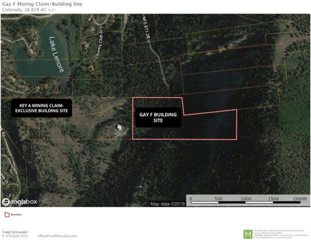 309 Gold Mountain Trail, Ridgway, CO 81432 (MLS #37161) :: Telluride Properties