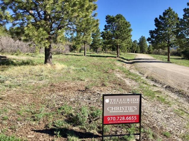 TBD High Bluff Drive Lot 16, Placerville, CO 81430 (MLS #37178) :: Telluride Real Estate Corp.