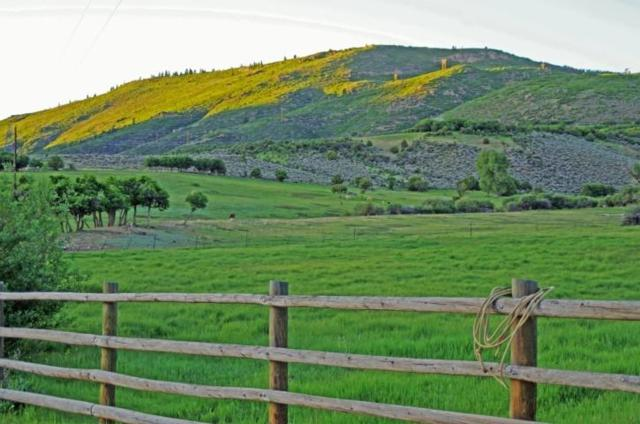 1060 County Road 21, Out Of Area, CO  (MLS #37185) :: Telluride Properties