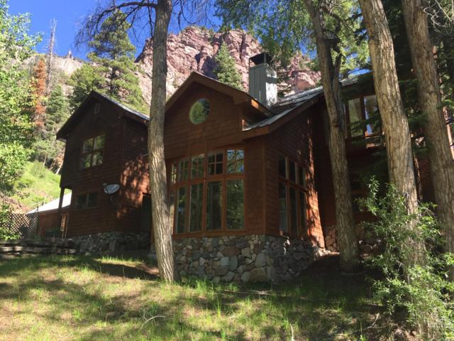 305 Queen Street, Ridgway, CO 81427 (MLS #37189) :: Telluride Properties