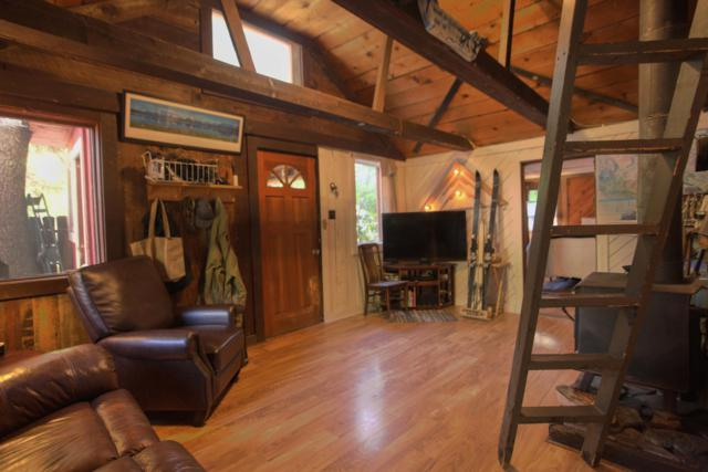 20524 Co-145, Placerville, CO 81430 (MLS #37199) :: Nevasca Realty